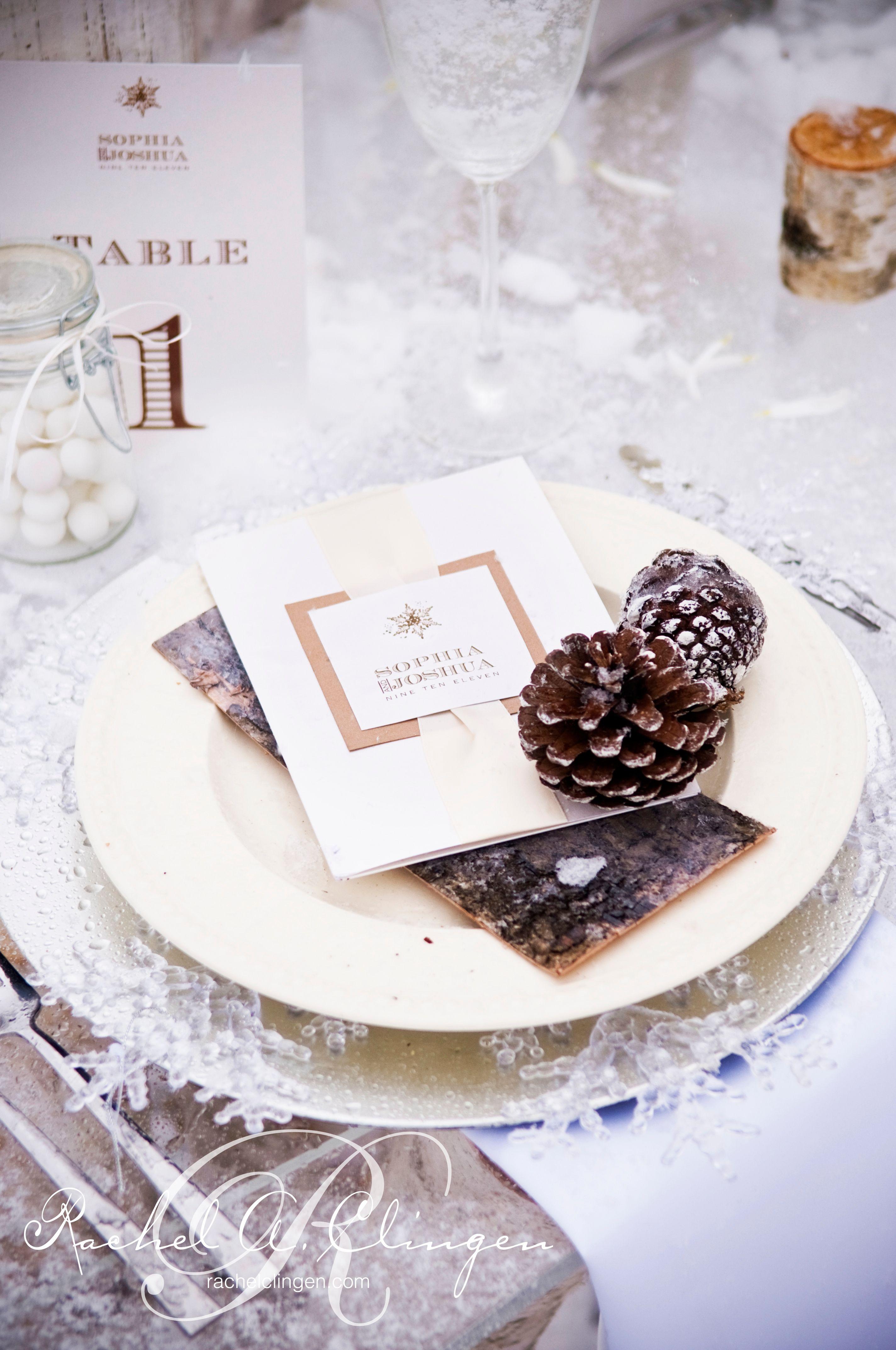 Rachel A Clingen Announces The Toronto Winter Weddings