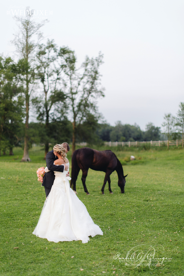Horse Wedding Ontario