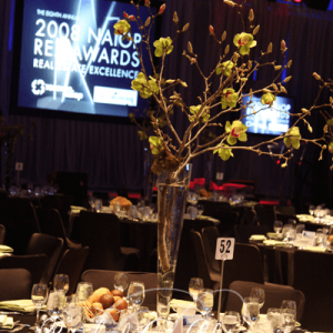 Custom draping and decor for corporate events and awards shows.
