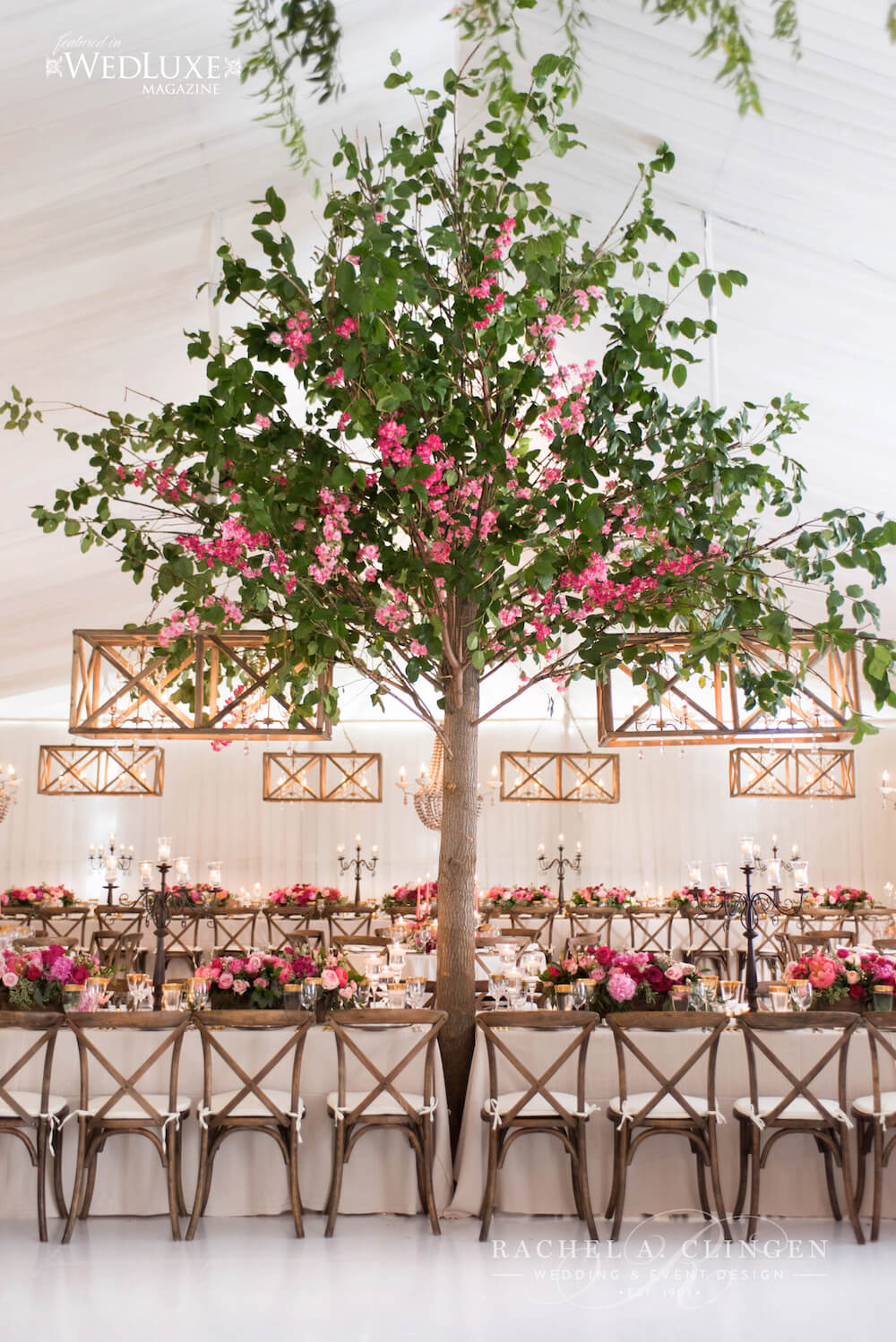 rachel-a-clingen-muskoka-tent-wedding-tree
