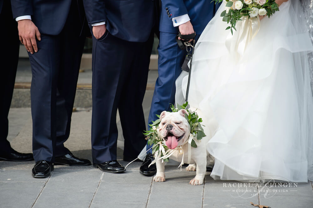 dog-wedding-flowers