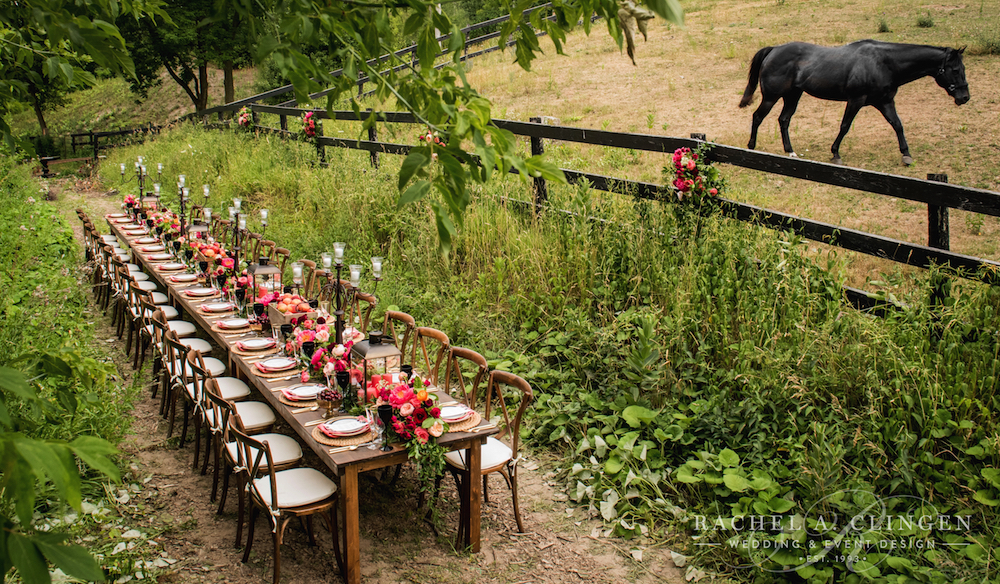 horse-wedding-farm-ideas