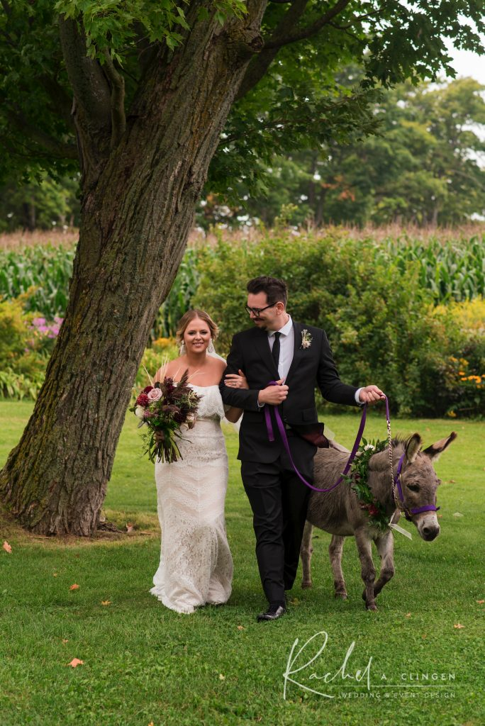 lexi richard donkey weddings