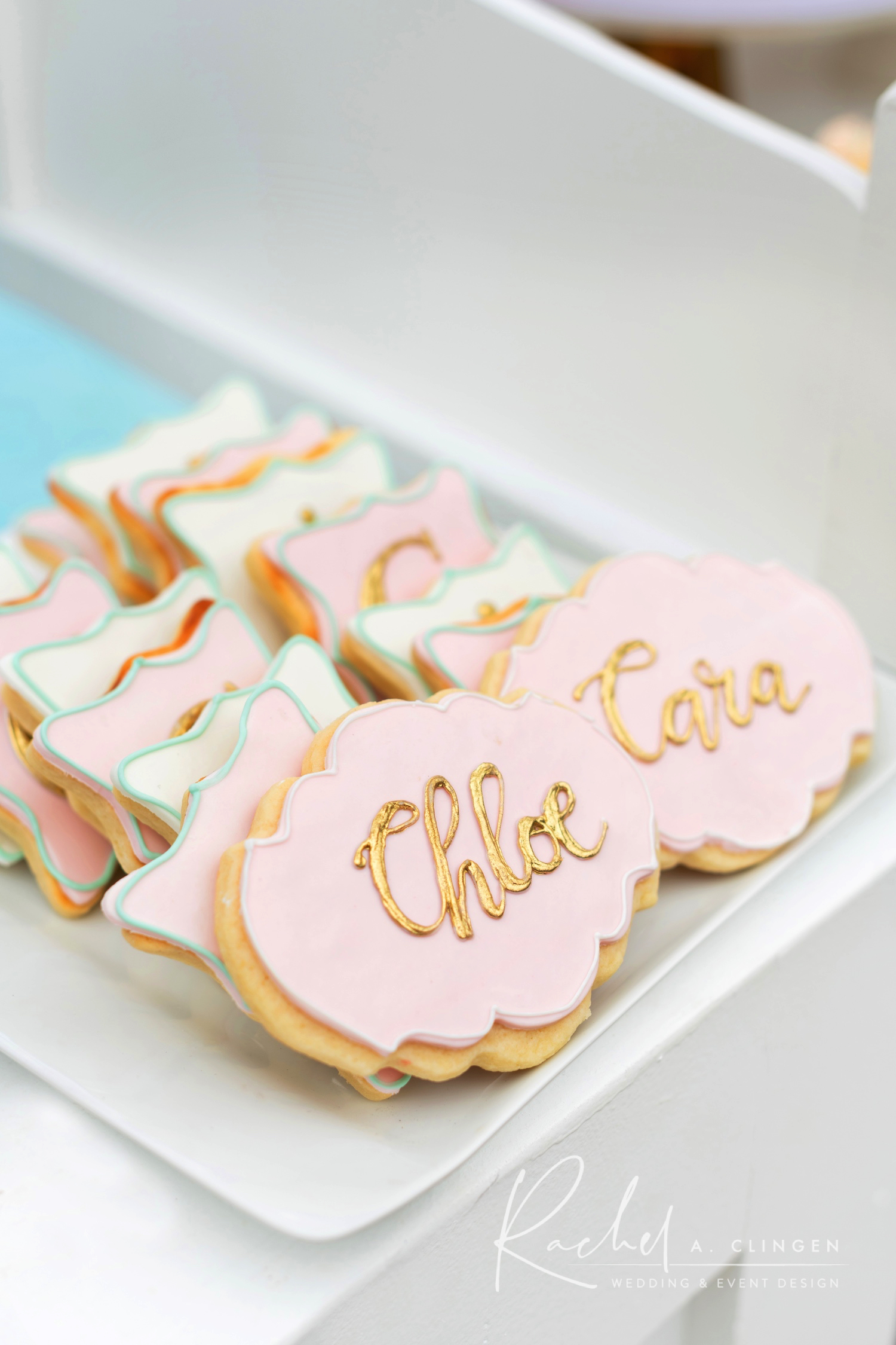 baby shower cookies twins