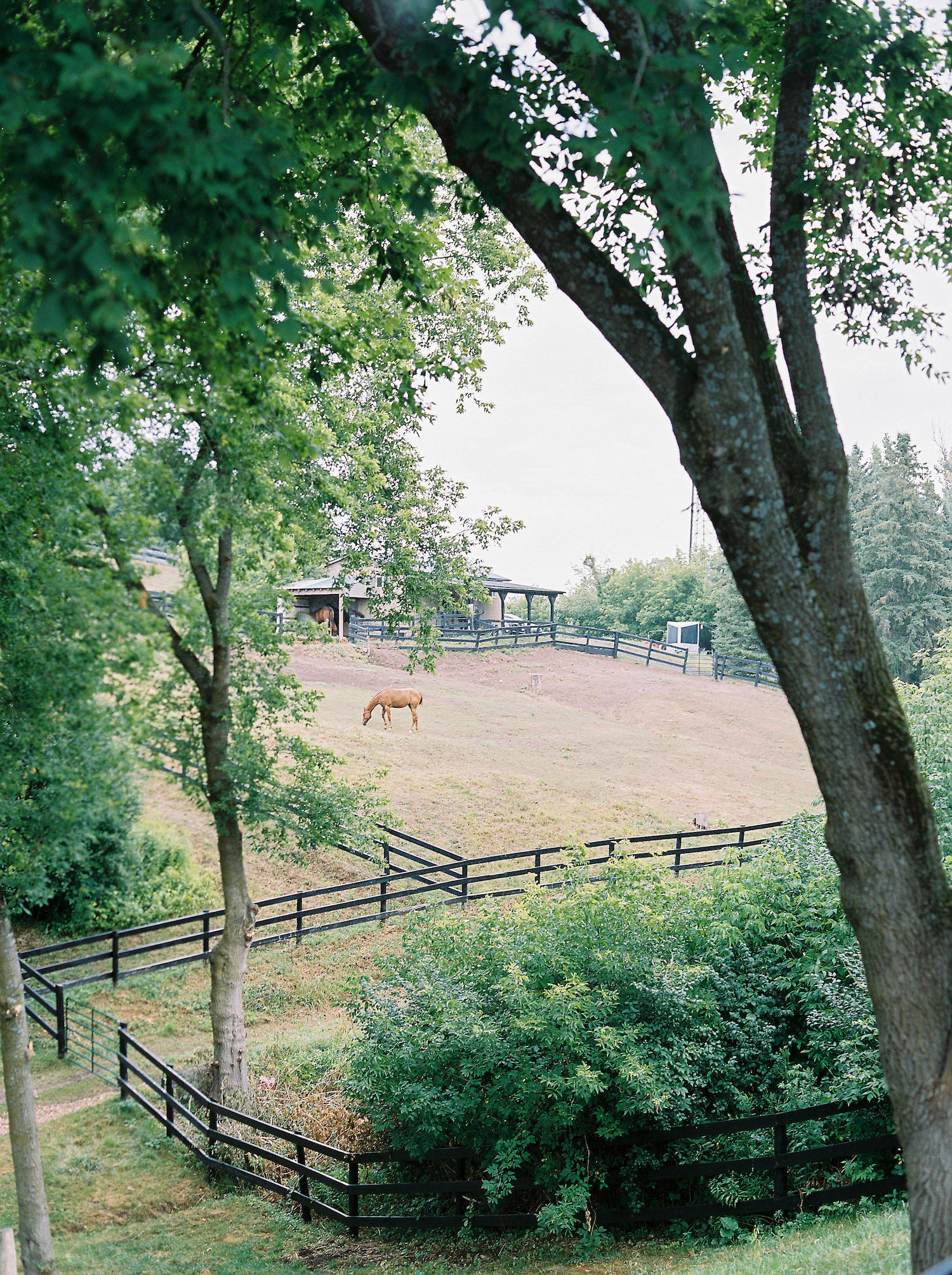 clingen ranch
