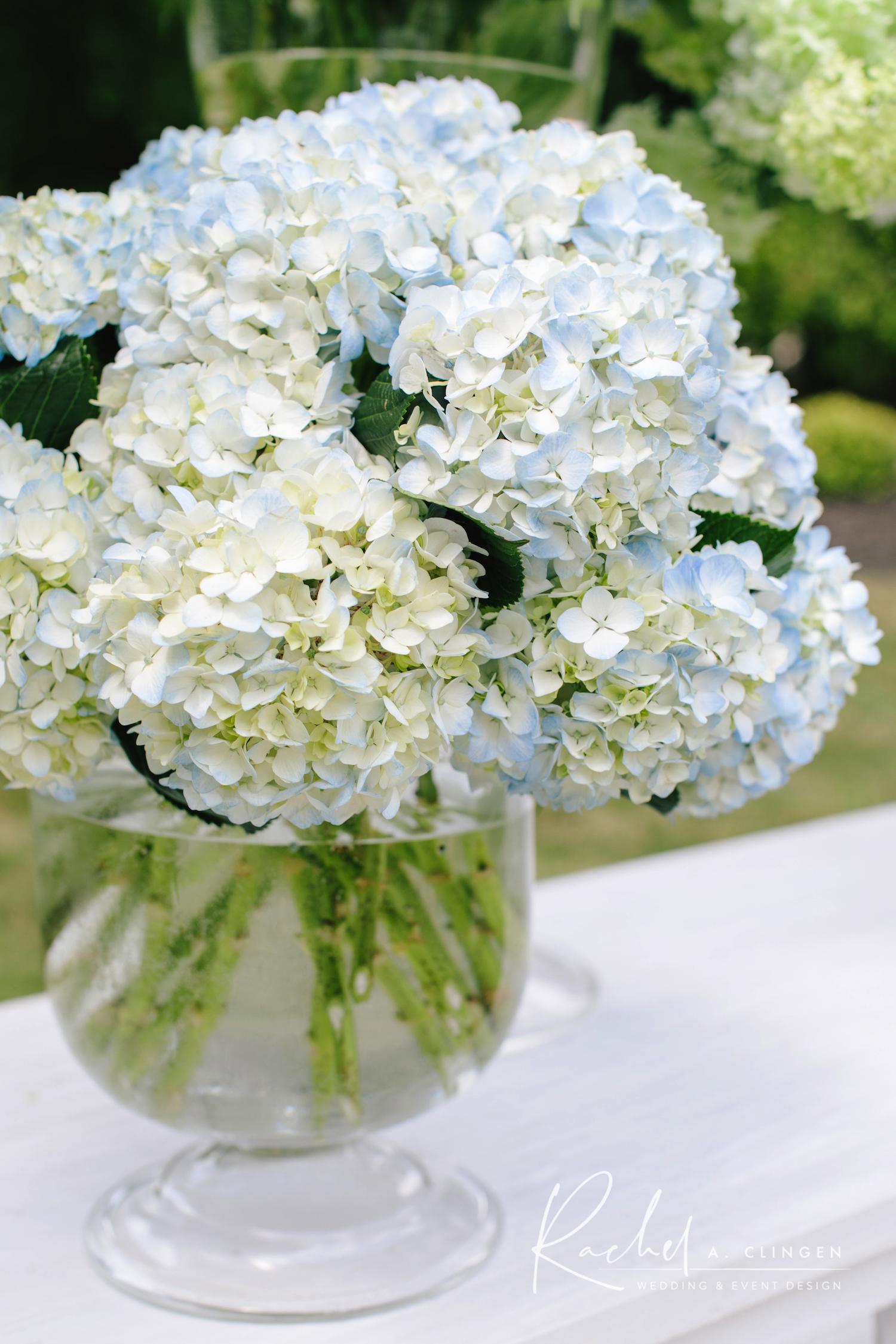 hydrangeas wedding flowers